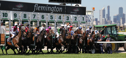 Descarado Melbourne Cup odds, form and barrier