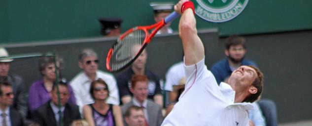 2013 ATP Tennis Wimbledon Men's Singles Quarter Betting Odds and Betting Guide