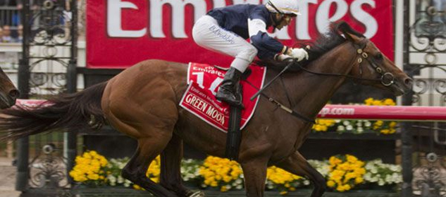 2013 Melbourne Cup odds, tips, horses, betting and barrier. November 5, Flemington Raceourse